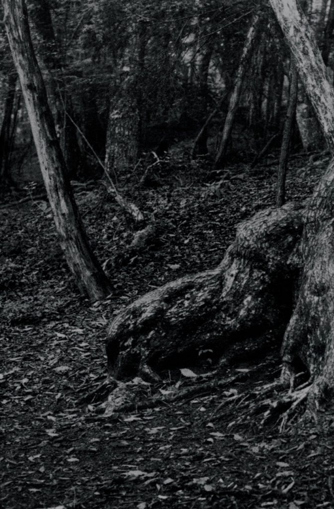 Jurgen Lehl by Yuriko Takagi (© by Yuriko Takagi)