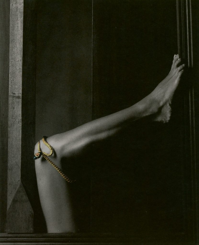 Lotus Arts de Vivre by Yuriko Takagi (© by Yuriko Takagi)